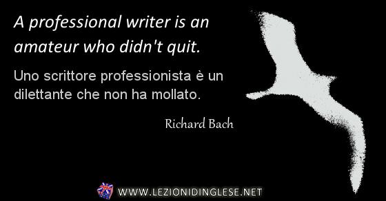 Uno scrittore professionista è un dilettante che non ha mollato.